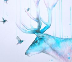In the stillness of a hummingbirds eye.... 'detail by LouiseMcNaught