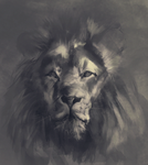 Lion sketch by Ketunleipaa