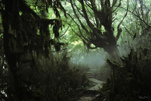 Snaps forest by OdetteandOdile