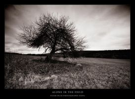 Alone In The Field by AaronLewis