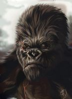 Kong is king by clefchan