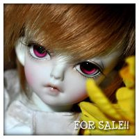 FOR SALE SOOM MD TACO BLUE by fransyung
