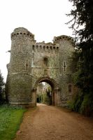 Castle Entrance3 by NickiStock