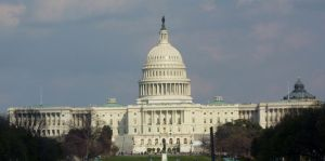 The Capitol in Washington DC by go4music