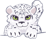 snow leopard cub by Kna
