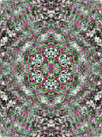 madgardens and crazyruthie Secret Collab mandala by Valpigle