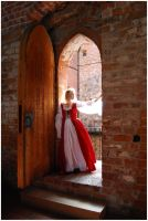 Lady Of The Castle VI by Eirian-stock