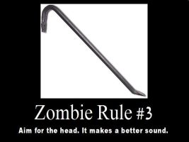Zombie Rules 3 by psbox362