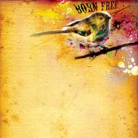 Born Free by thedesignchamber