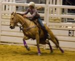 STOCK 2013 Rodeo-271 by fillyrox