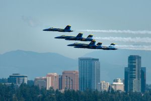 Angels over Seattle by SharkHarrington
