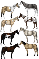 Natural Horse Adopts 7 by Quickdopts
