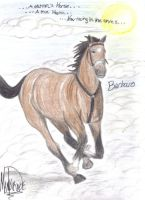 In Memory of Barbaro by horsewolf
