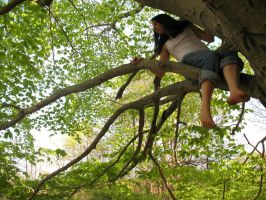 In a Tree by flamingfish