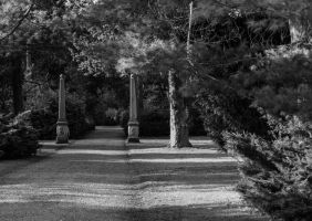 Anglesey Abbey Winter 2 by Elfsire