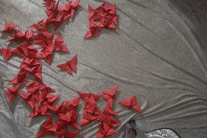 Origami Butterflies 4 by themuseslibrary