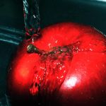 Red Apple by Juchise