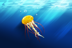 Jellyfish by Kairi292