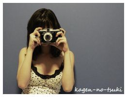 Folding Camera by kagen-no-tsuki