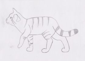 Art class drawing: Kitteh sketch :) by TIB-The-Signless
