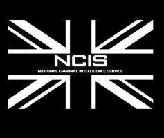 NCIS - National Criminal Intelligence Service by DoctorWhoOne