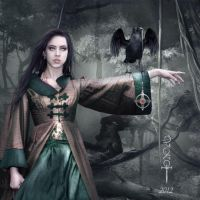 The Order by vampirekingdom