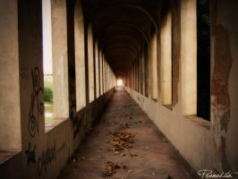 I can see the light by premedito