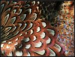 Pheasant Feather Study by cycoze