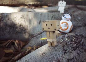 Danbo and BB-8 on an Adventure by Khallandra