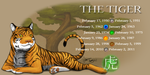 Year of the Tiger by BlazeTBW