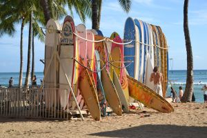 The Surf Culture by Hyacinth20