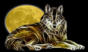Wolf-Wallpaper by KarmeticPeace