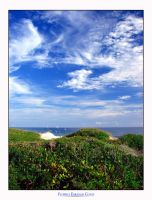C4D Emerald Coast 5 by cravingfordesign