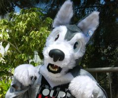 my first fursuit! by rz250