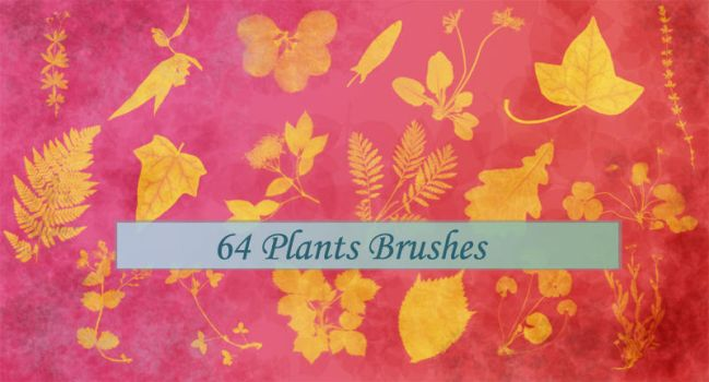 64 Plants Brushes by MalaAssia