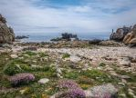 Ouessant Island 20 -  Rocks and Heather by HermitCrabStock
