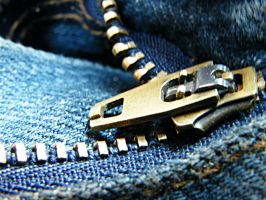 one of a billion of zips by robszeidler