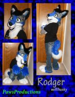 Roder wolfhusky partial com. by PlushiePaws