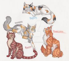 Redfoot - Wildheart - Brightsky - Dawnshade by CaptainMorwen
