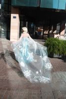 Elsa cape by LadyliliCosplay