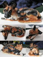 African Painted Dog by Meliss