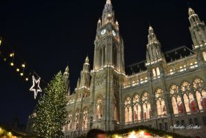 Christmas Wien by toinfinity18