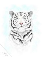Tigris by FeriAnimations