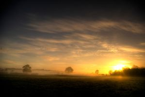 Early rising II by Allegoria-Images