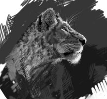 Lion Greyscale by RogueLiger