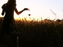 Field of love. by CraftMonster