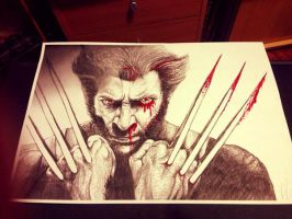 Wolverine Bloody Sketch by AimzzArt