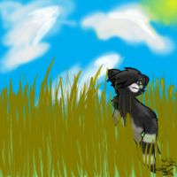 A Grassy Field by Griffin-Kitten