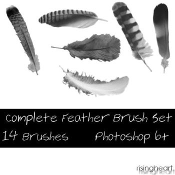 Complete Feather Brush Set by risingheart