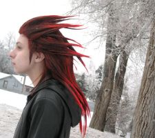 Axel: Cold Intent by pixiedustling